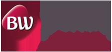 bW-logo1