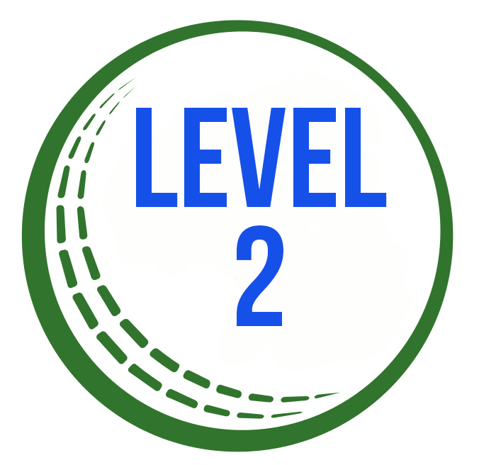 Cricket_IreBall Level 2