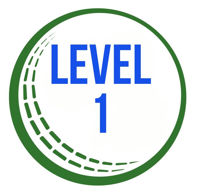 Cricket_IreBall level 1